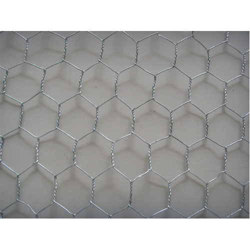 Hexagonal Wire Netting - Galvanized Drawn Iron Wire
